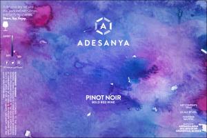 Pinot Noir Label at Adesanya Mead and Microbrewery